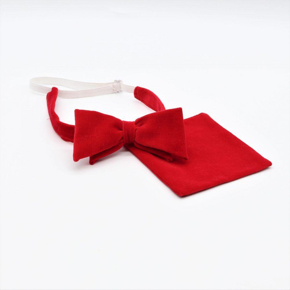 Rotes Fliegen-Set mit Einstecktuch